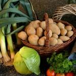 栄養も価格もお得。季節を乗り切る特殊効果も?旬の「食材力」はあなどれない。